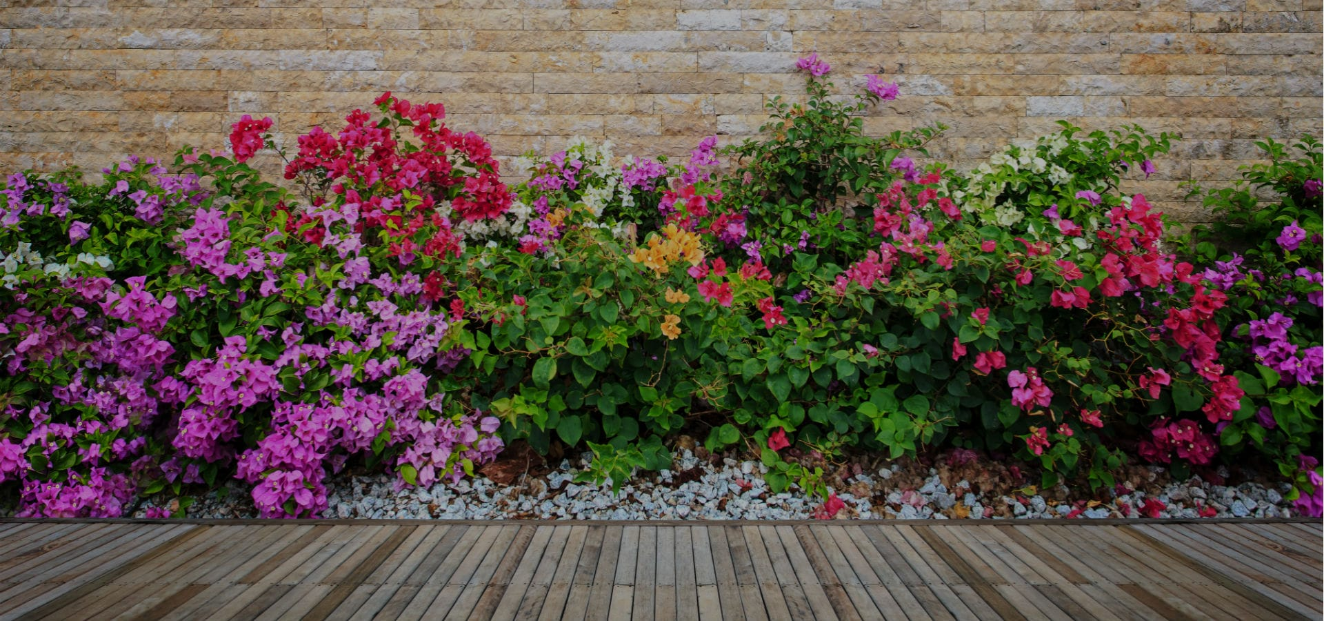 garden-decking-with-colourful-flower-beds