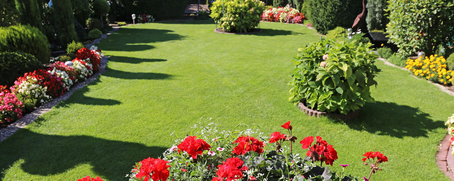 How to keep your garden looking good