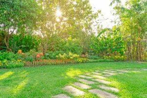 TTS Garden Services blog - Stepping Stones