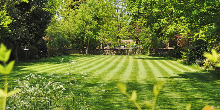 Spring lawn care - all you need to know